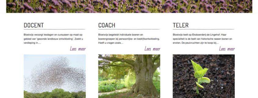 Bloeiwijs website homepage