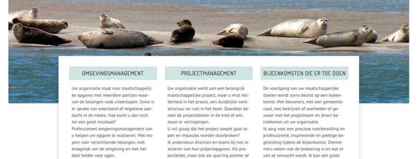 Webdesign som der delen homepage